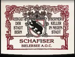 logo-ohne-schatten